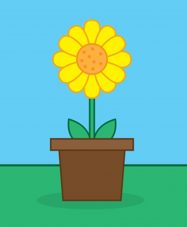 Yellow sunflower in pot outside