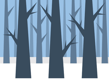 forrest: Blue forrest in the winter with snow