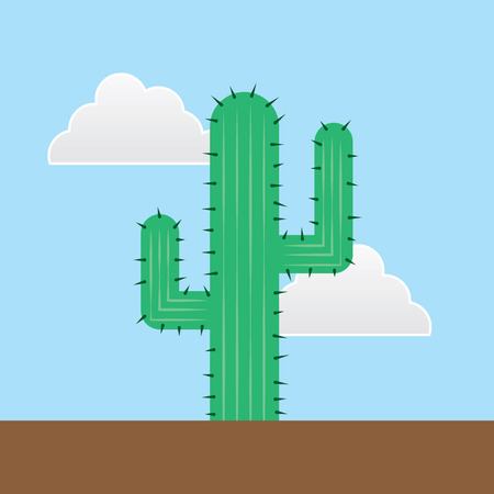 humid: Green cactus outside in the desert