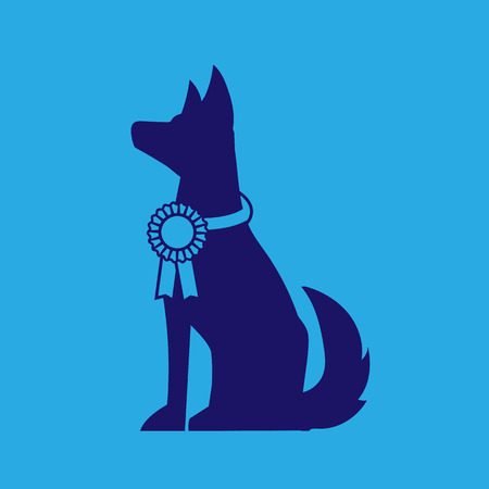 Dog with blue ribbon and blue background