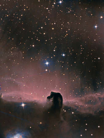 The Horsehead Nebula from my backyard, also known as Barnard 33 is a small dark nebula in the constellation Orion.
