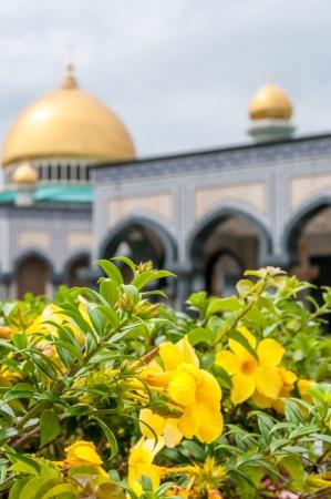 copula: Mosque Stock Photo