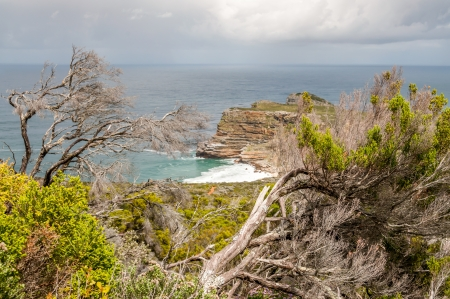 cape of good hope: Cape of Good Hope Stock Photo