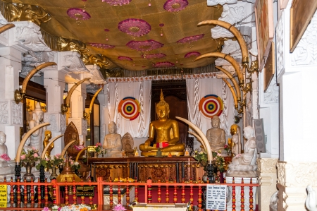 Buddha Statue in Kandy Temple photo