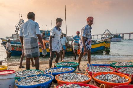 india fisherman: Catch Fish in Pamban - India