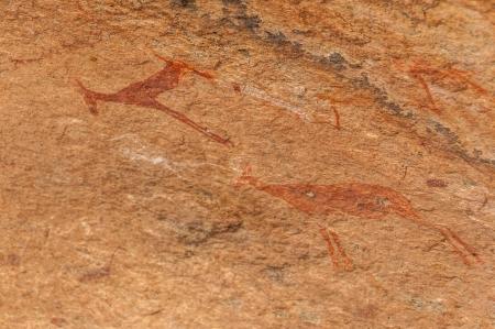 rock painting: Rock Painting The White Lady - Brandberg  Namibia