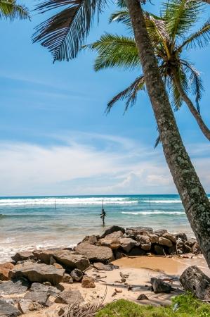 galle: The Stilt Fishermen of Galle - Sri Lanka