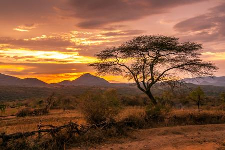 エチオピアのバナ族領土の夕景 写真素材