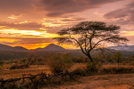 ethiopia: Evening view of the territory of the tribe Bana in Ethiopia  Stock Photo