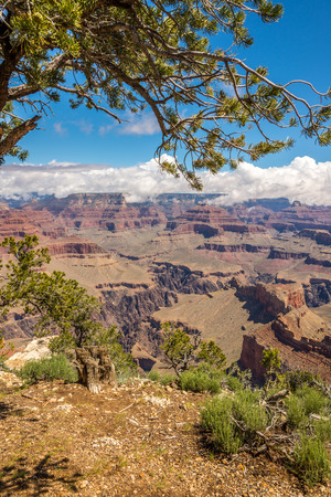 mohave: North Rim of Grand Canyon View from Mohave Point