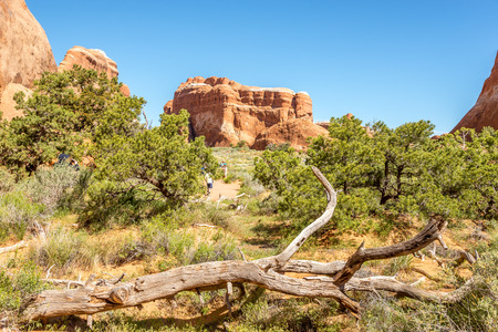 geologists: ARCHES N.P.,UTAH - MAY 28,2015 - Trail in Devils Garden.Trail to Landscape Arch is 1.5 mile long.