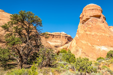 geologists: Trail in the Devils Garden - Arches N.P.