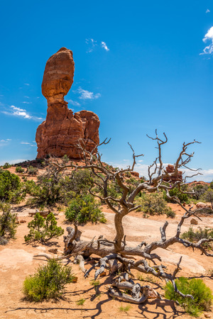 geologists: Balanced Rock in Arches National Park