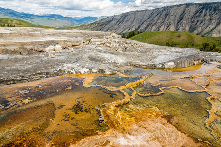 minerva: Mammoth Hot Springs - Minerva Terrace ,Yellowstone