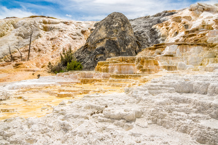mammoth: Mammoth Hot Springs in Yellowstone National Park