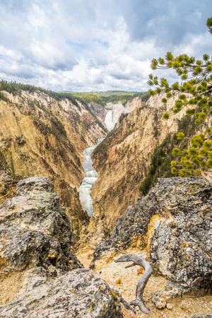 geologists: River Yellowstone with falls in National Park  - Wyoming Stock Photo