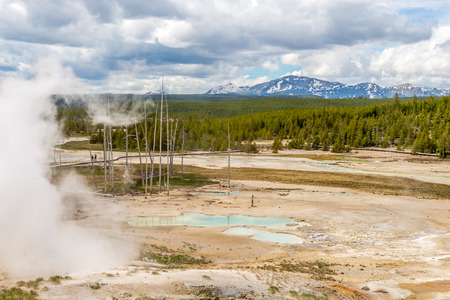 geologists: Lakes of Norris Basin in Yellowstone National Park