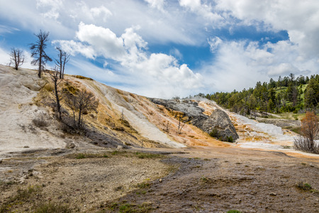 geologists: Mammoth Hot Springs in Yellowstone National Park