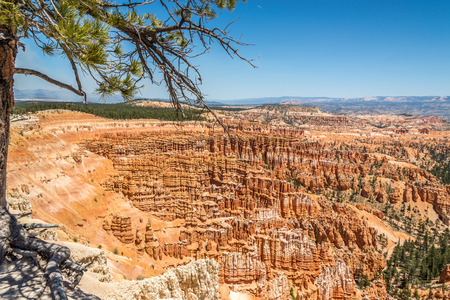 geologists: View from Inspiration Point at the nature of Bryce Canyon