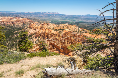 bryce: View from Bryce point at the nature of Bryce Canyon Stock Photo