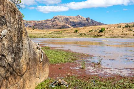 anja: Anja park - Nature reserve of Madagascar