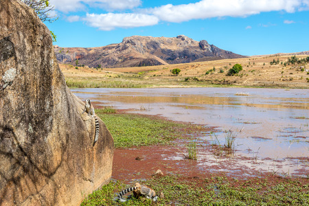 Anja park - Nature reserve of Madagascar