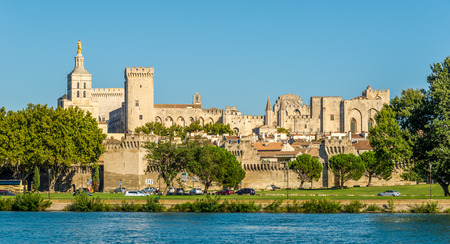 pontiff: Palace of the Popes in Avignon - France