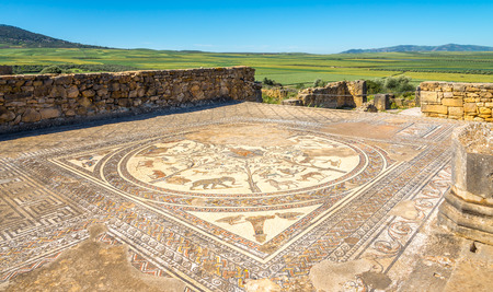 Mosaic in House of Orpheus in ruins ancient city Volubilis - Morocco