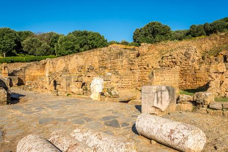 Ruins of Forum in ancient Chellah (Sala Colonia) in Rabat - Morocco