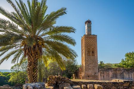 Chellah (Sala Colonia) - Minaret of mosque ruins - Rabat ,Morocco Imagens