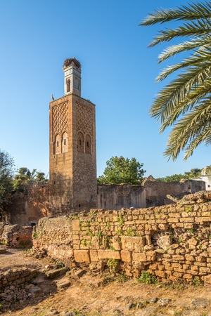 Minaret in ancient Chellah (Sala Colonia) in Rabat - Morocco