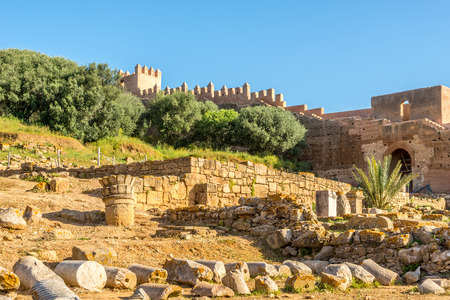 View at the ruins of Chellah (Sala Colonia) in Rabat - Morocco