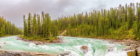 Panoramic view at the small island on the Sunwapta river in Jasper National Park in Canadian Rocky Mountains 免版税图像