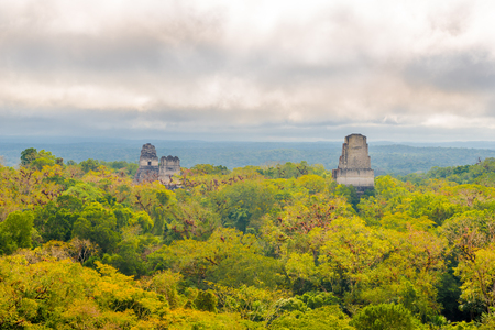View at the forest with Top of Temples in Tikal National park, Guatemala