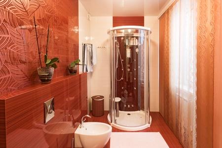 Modern shower cabin and bidet in bachroom