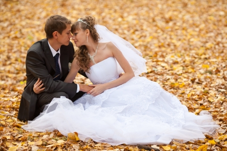wedding theme, the bride and groom are in the maple leaves on grass photo