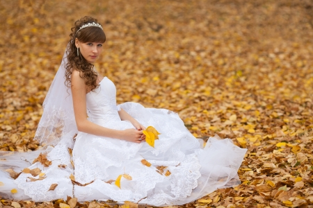 wedding theme, the bride  in the maple leaves on grass Stock Photo