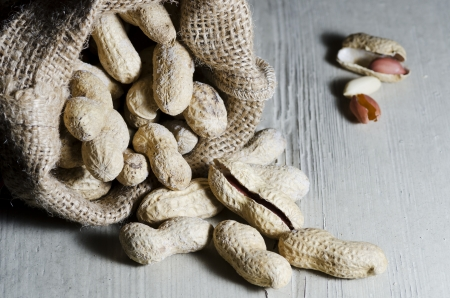 handful: Peanuts in shell in organic bag, on white wooden table