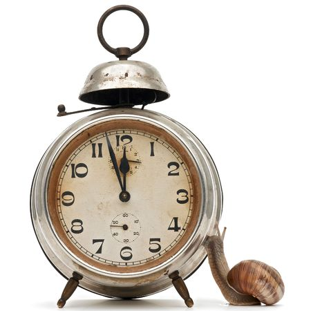 invertebrate: time flow concept - an alarm clock and a snail