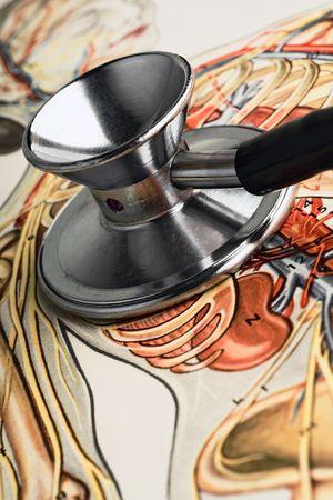 stethoscope on a body chart photo