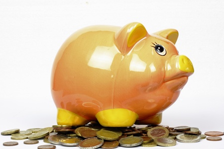 piggy bank with euro coins on the white background