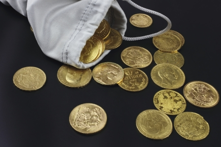 purse with gold coins