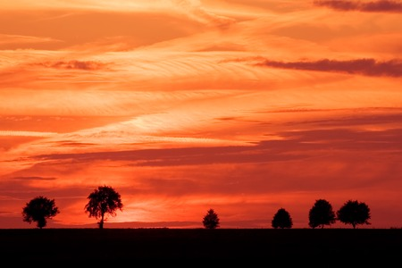 Landscape photographed during vivid sunset over tranquil countryside photo