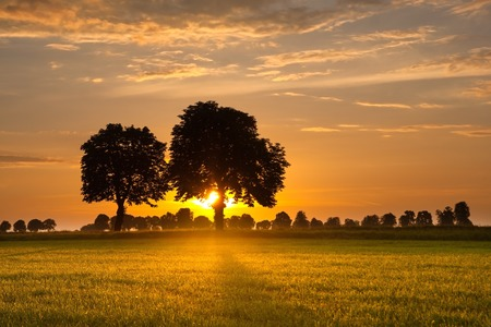Beautiful sunset with dramatic sky on field or meadow photo