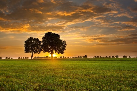 lone: Beautiful sunset with dramatic sky on field or meadow Stock Photo