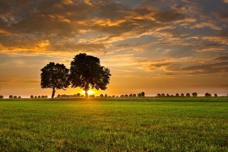 Mooie zonsondergang met dramatische hemel op het veld of weide