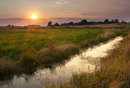 warmia: Wild beautiful polish river in rural landscape