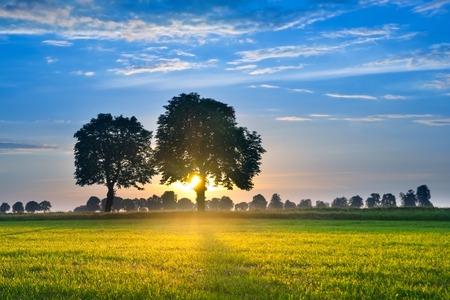 Levendige lucht beschikt over zonsondergangskleuren en wispy wolken.