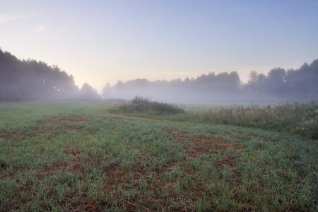 Foggy sunrise over beautiful polish meadow, late spring or summer photo