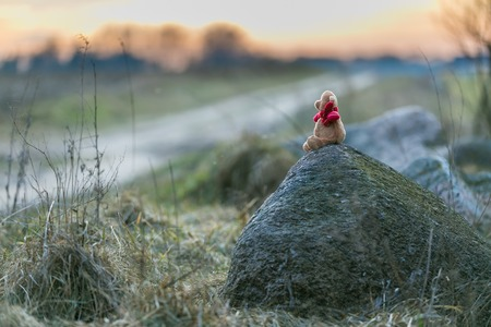 Small teddy bear sitting on stone in a rural landscape at sunset